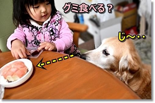 Snapshot_0.jpg