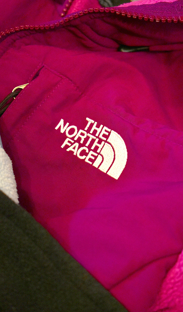 ノースフェイスNorth Faceフリースジャケット画像デナリジャケット@古着屋カチカチ