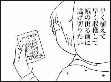 kfc01517-3