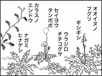 kfc01521-5