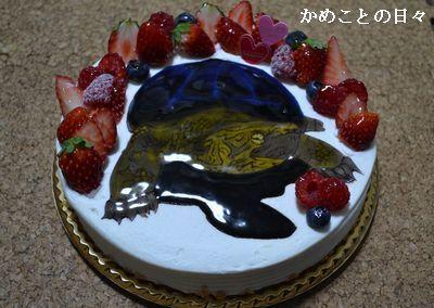 DSC_0065-s.jpg