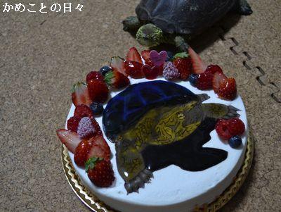 DSC_0115-s.jpg