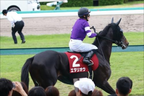 【菊花賞】エタリオウの主な勝鞍が2歳未勝利な件