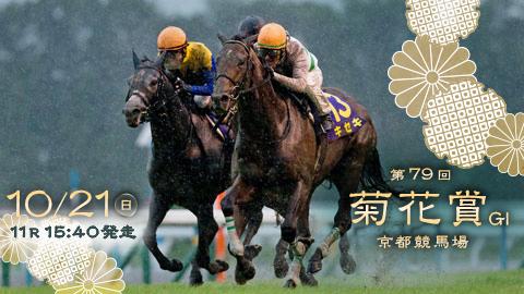 【競馬レース展望】第79回 菊花賞(GⅠ)