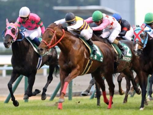 【競馬レース予想】第11回 カペラステークス(GIII)