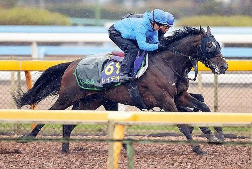 【レース展望】2018年12月23日第63回 有馬記念(GⅠ)