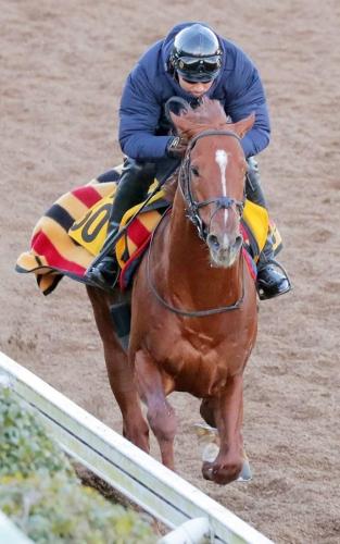 【KITAGIMA予想】では、JRA賞最優秀3歳牡馬が大問題なのて、久々に怒りの所見を述べさせていただく。( ´Д`)y━・~~