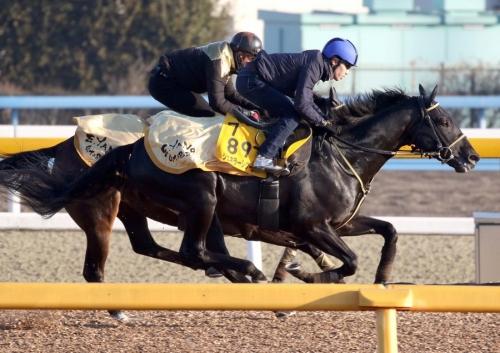 【AJCC2019】田辺裕信騎手「ジェネラーレウーノ、控える形の競馬にも対応できる」