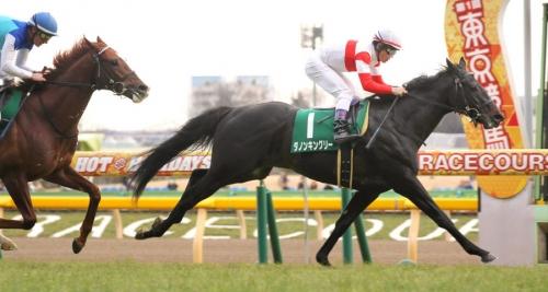 【レース回顧】第53回共同通信杯ダノンキングリー 反省会
