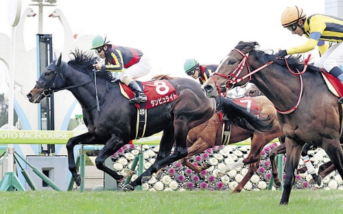【レース回顧】京都記念ダンビュライト反省会場