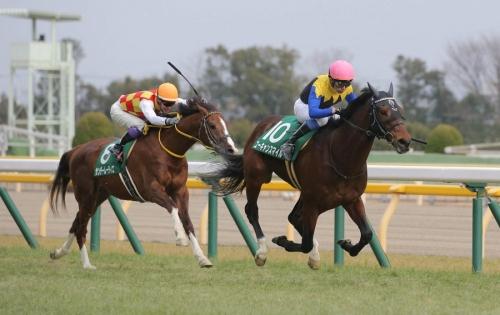 【競馬ネタ】引退する厩舎への忖度が半端ない件