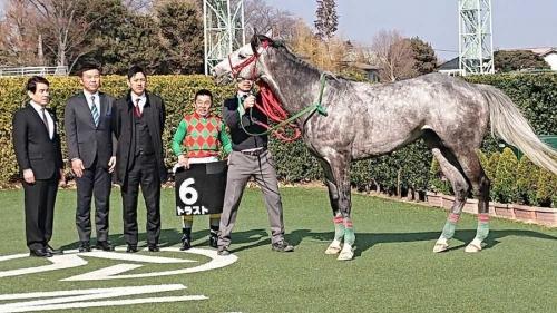 【競馬】障害3連勝トラスト放牧 4・13中山GJは見送り
