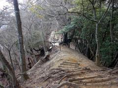 ③大山への道はよく整備されていました
