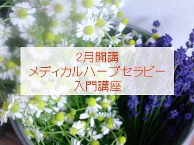 herb201902.jpg