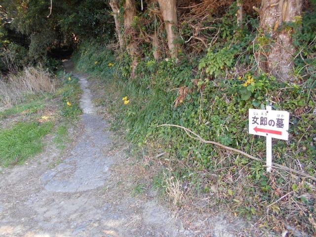 美浜トーチカその1 (5)