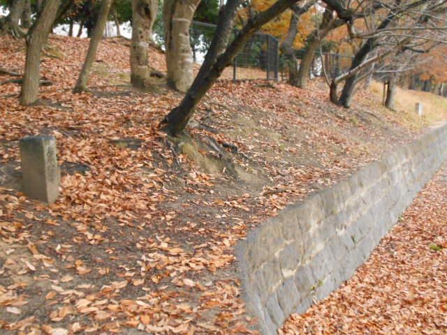 鹿助公園 (6)