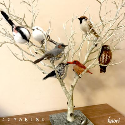 IMG_7216ふち鳥さん