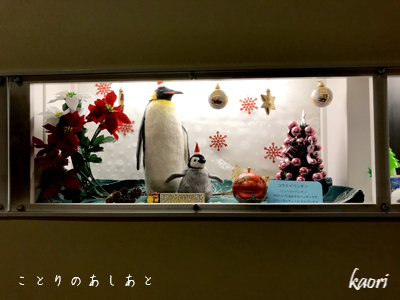 IMG_7911ペンギン
