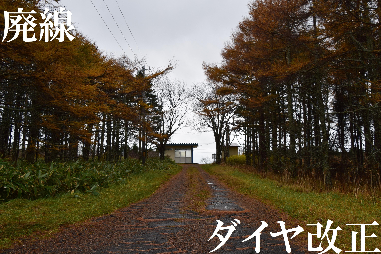 kaisei2019