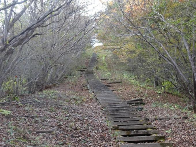 関東ふれあいの道の階段