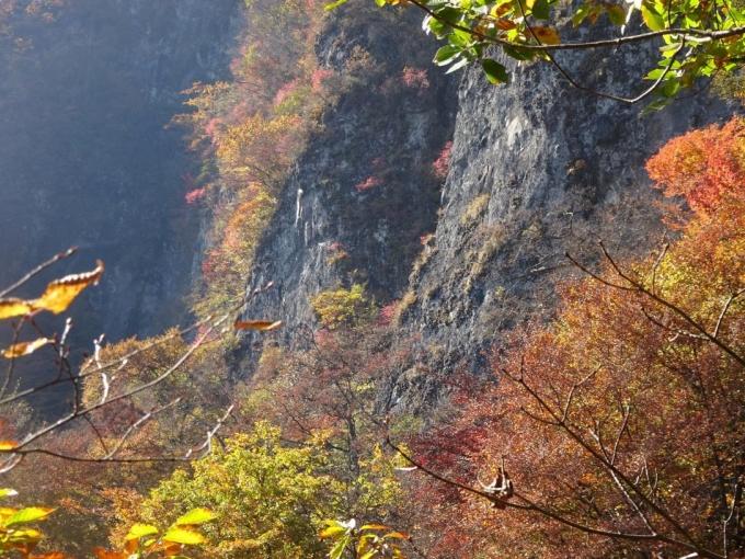 岩肌の紅葉