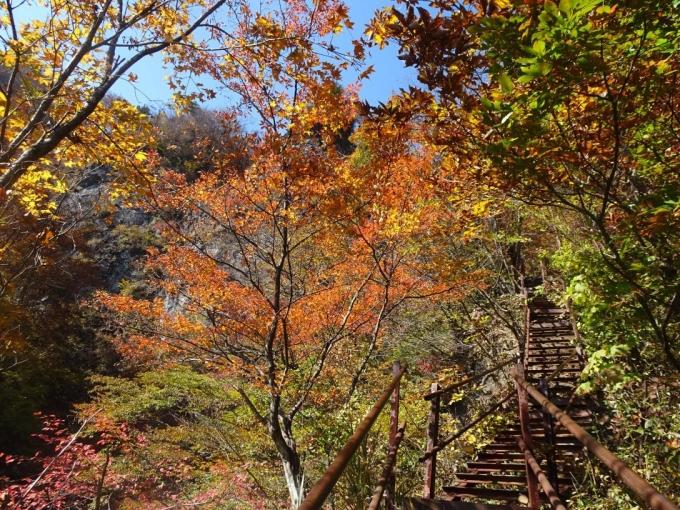 鉄階段の紅葉