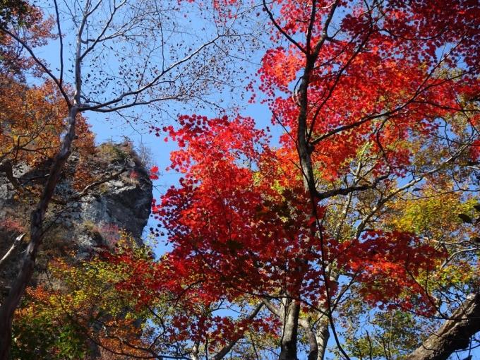 真っ赤なモミジと岩峰