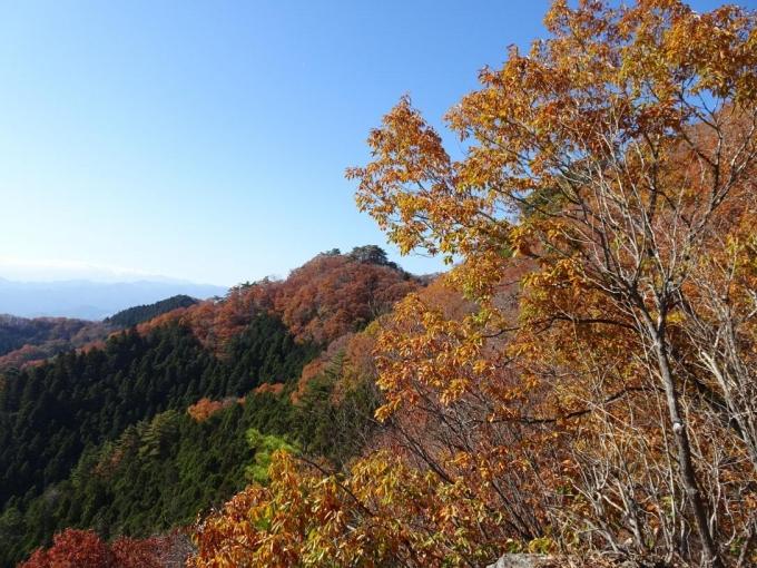 武蔵展望台から大前山