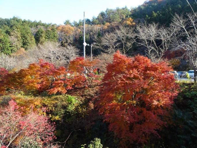 満願の湯付近の紅葉