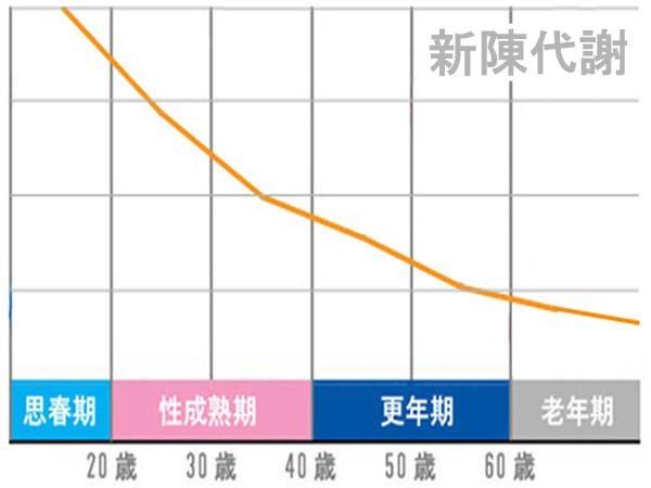 新陳代謝のグラフ