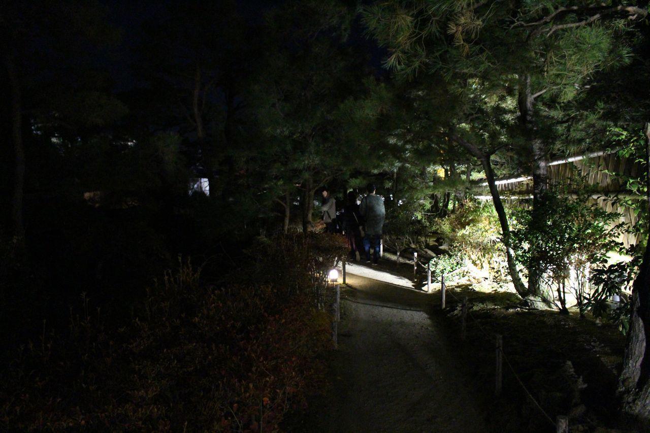 好古園2018-31