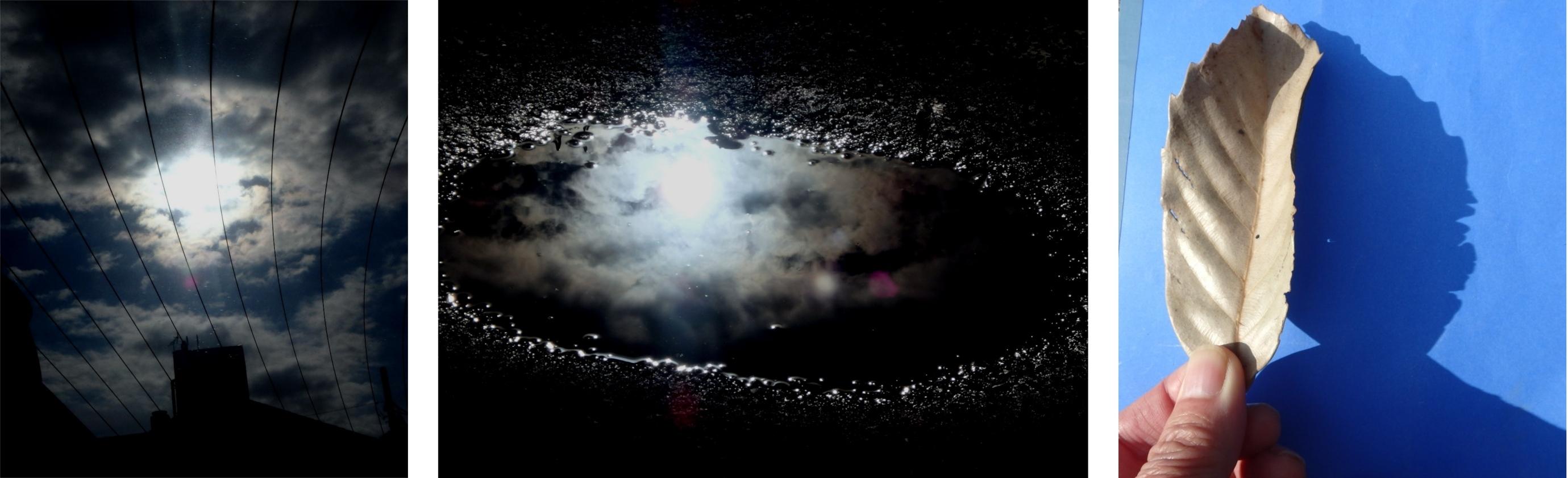 日食観測4