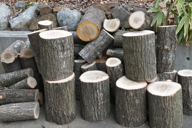 玉切り材を薪に。-01