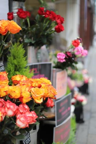 花屋のバラ
