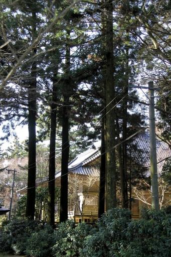 華蔵寺の薬師堂