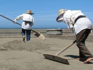 塩砂を集める