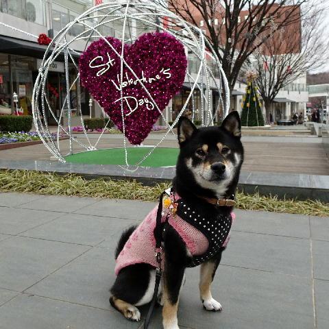 バレンタイン