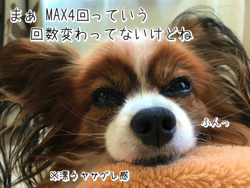 AdKw_AuT20181114-4.png