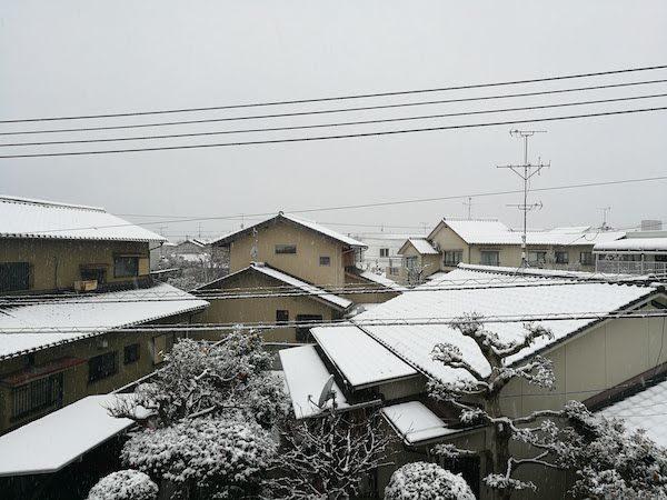雪19.2.11②