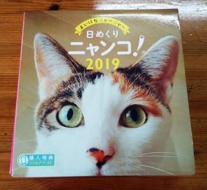 IMG_20181026_134510.jpg