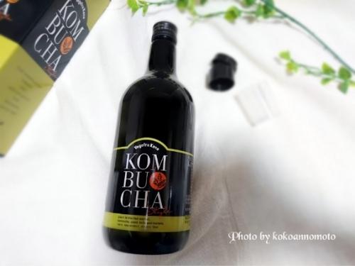 KOMBUCHA Style