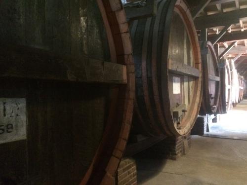1階のワイン貯蔵庫 (2)