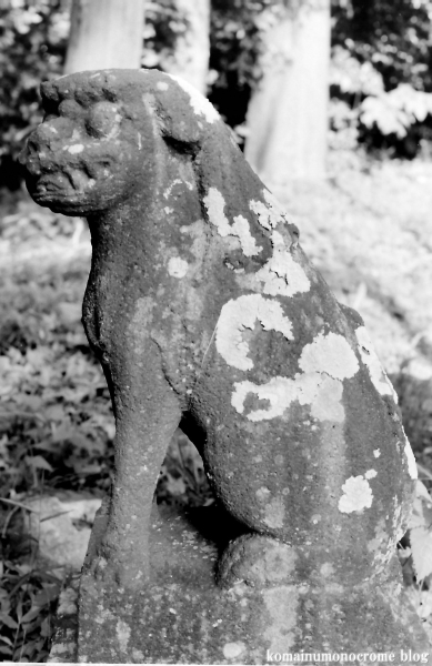 須賀神社 (仙台市泉区野村字萩塚)4