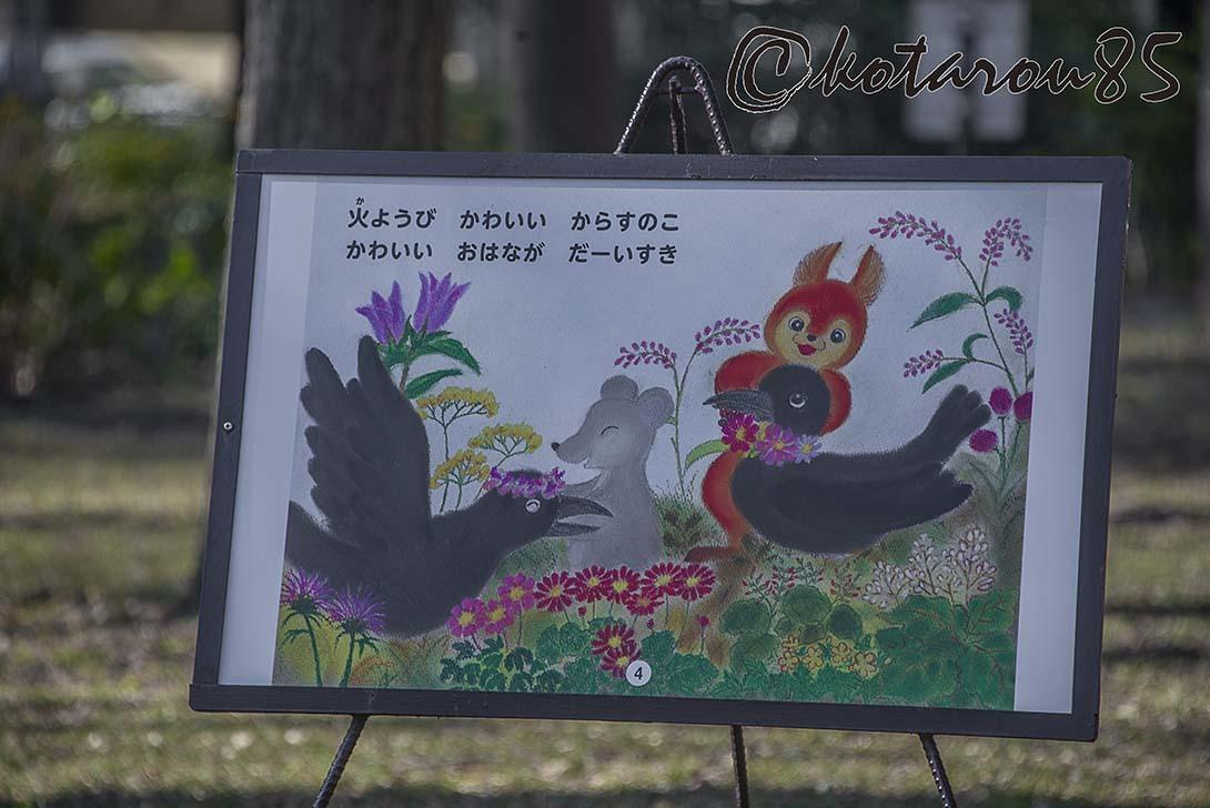 猿江恩賜公園8 20190203