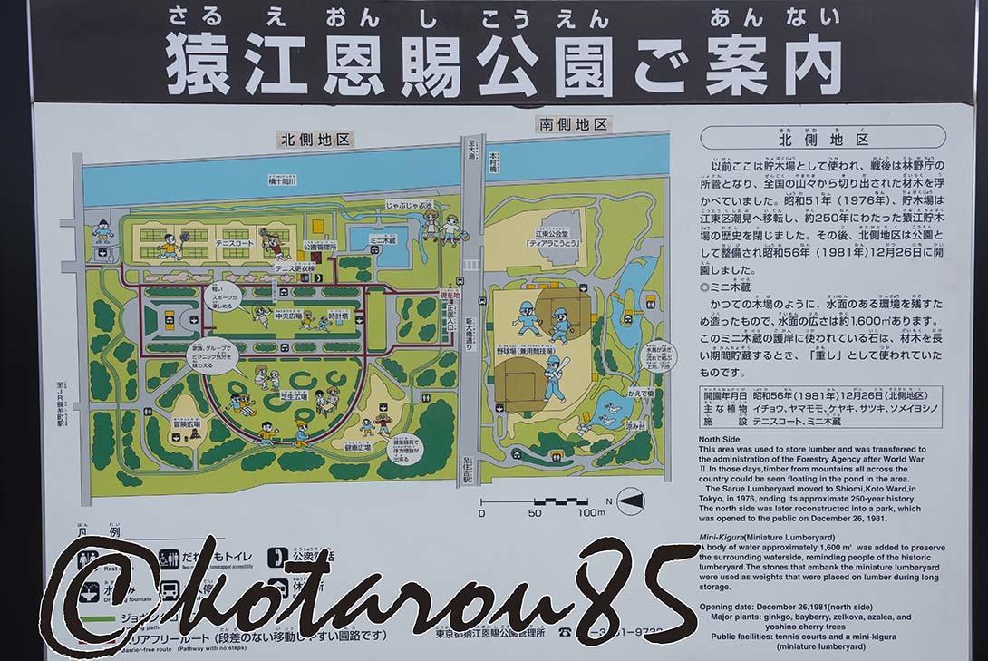猿江恩賜公園11 20190203