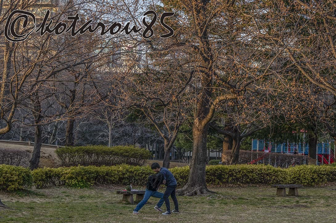 猿江恩賜公園 冬の夕暮れ 20190204
