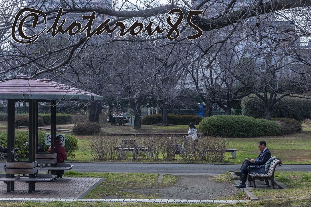 猿江恩賜公園2 20190221