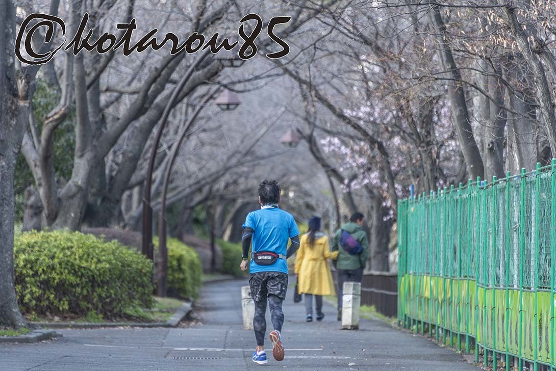 猿江恩賜公園 春景色5 20190317