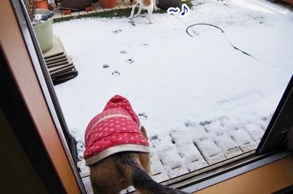 雪遊び 2