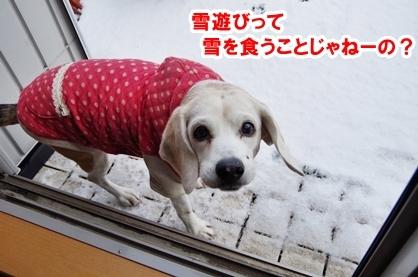 雪遊び 4